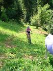 Tutaj na chwilę troszkę zgubiliśmy szlak, przy okazji ucierpiała trochę krowa, której zadek widać po prawej ;-)