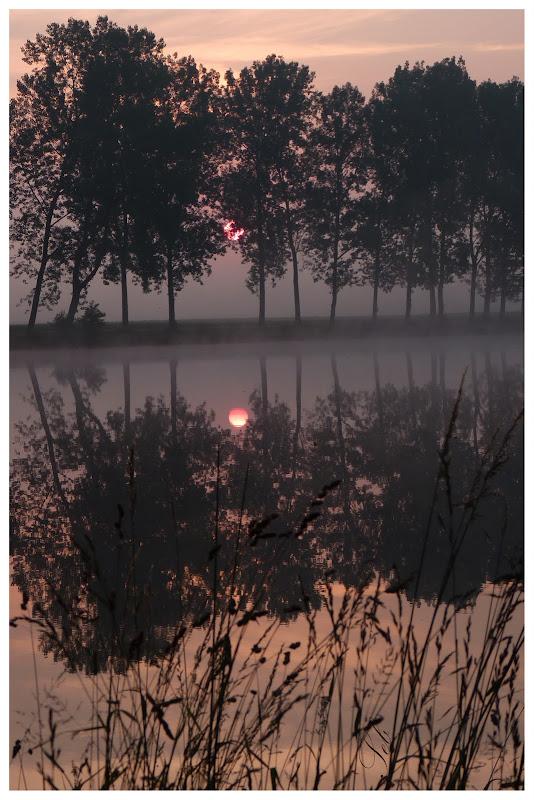 Lever du soleil dans les étangs P1000573