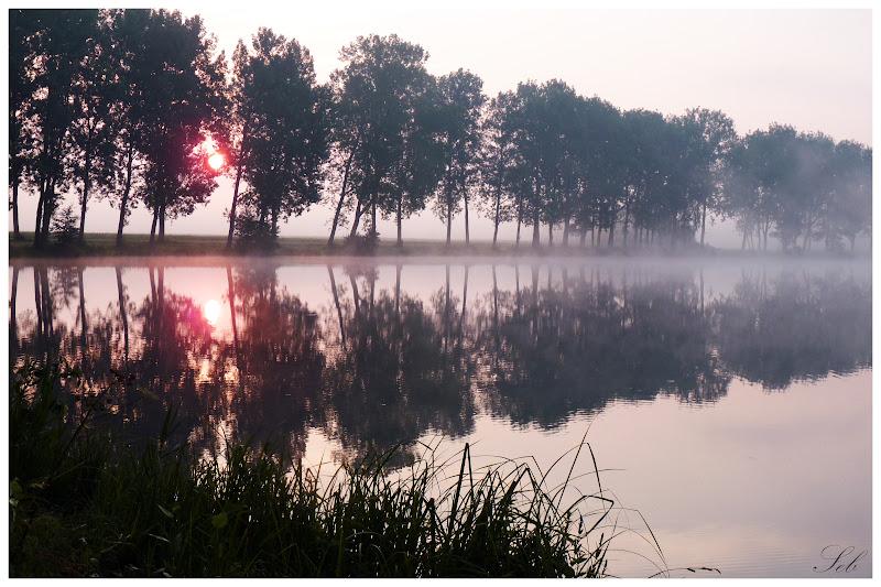 Lever du soleil dans les étangs Levesoleil3