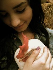 Demi Lovato y la gallina