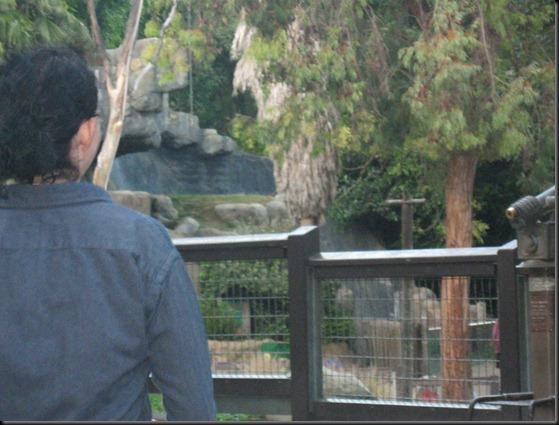 zoo! 075