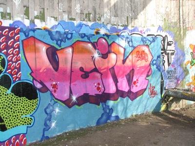 Vein2009 - RI