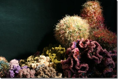 THE CROCHET CORAL REEF