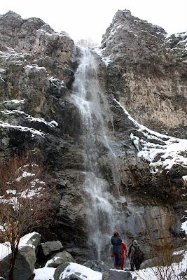 آبشار مگس