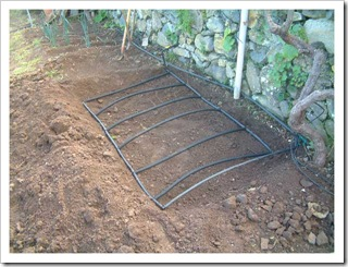 Underground wating pipes ready to be beried in the lettuce bed