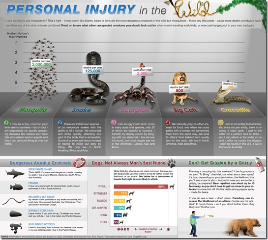 wild animal personal injury infographic
