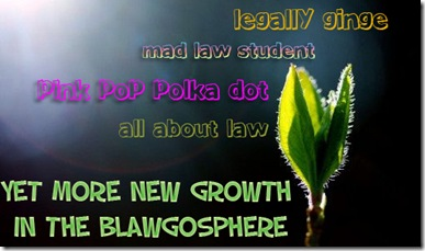 more growth in the blawgosphere