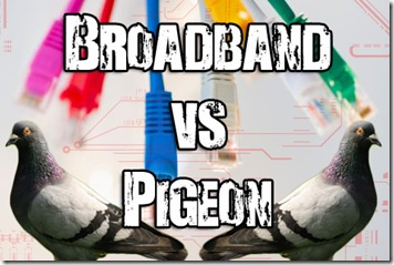 broadband vs pigeon