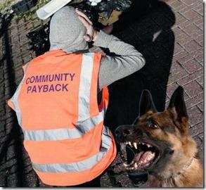 community payback bib & dog