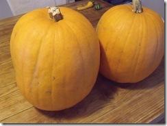 cookies and pumpkin 005