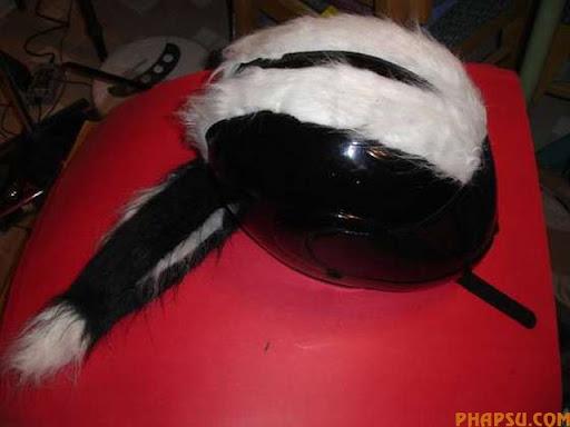 skunk-helmet.jpg