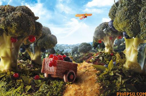 food_landscapes_001.jpg