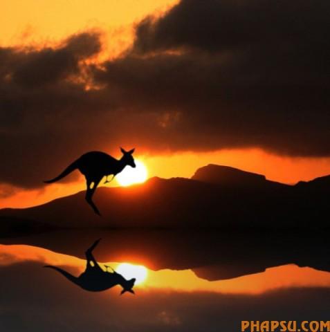 striking_reflective_photography_640_08.jpg