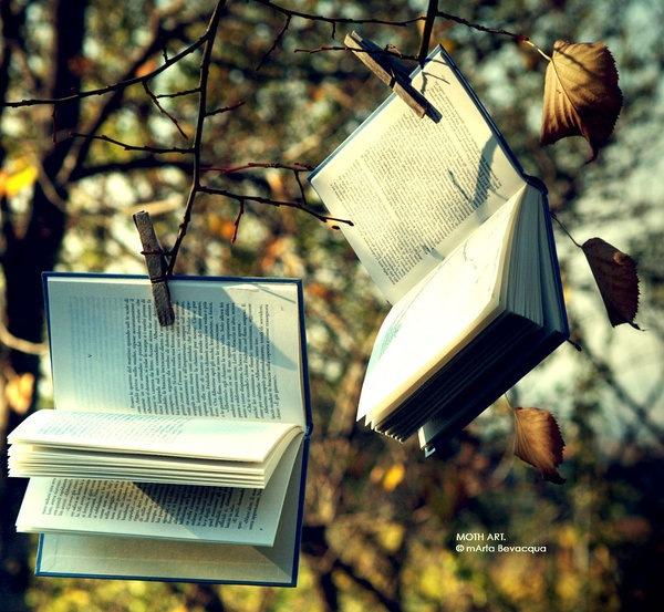 books___autumn__by_m0thyyku