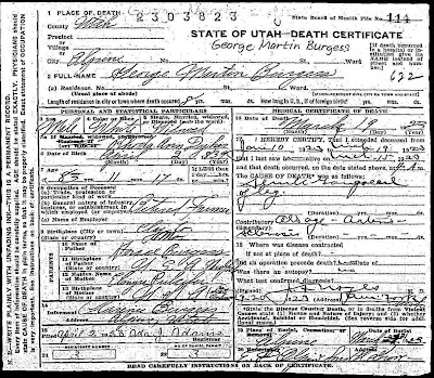 Burgess/Chadwick Family History Blog: George Martin Burgess Death ...
