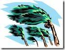 Stormy Palm Tree Clip Art