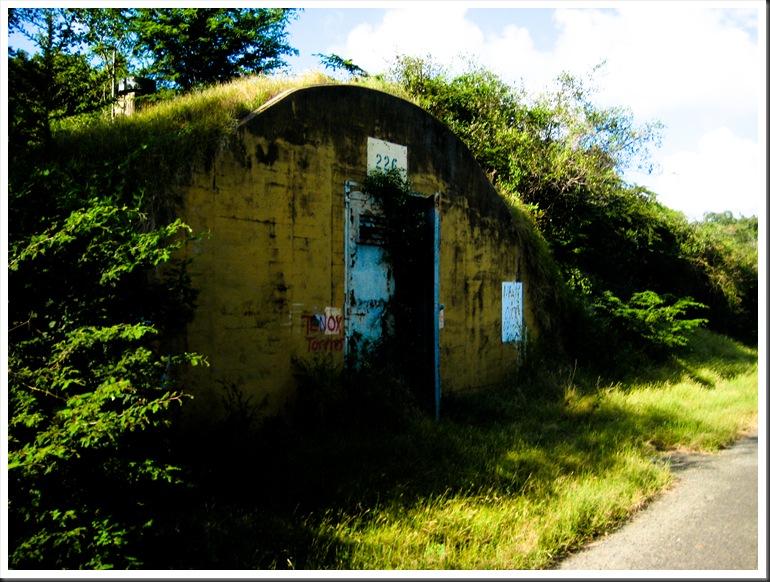 Puerto Rico 2010 129