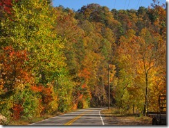 Lake Logan Road gets its color on!