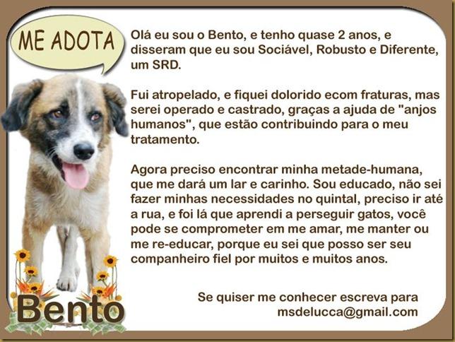 bento_adocao