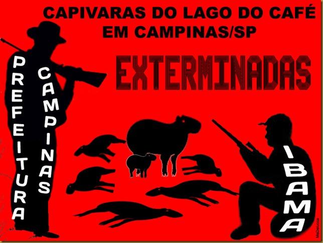exterminio_capivaras