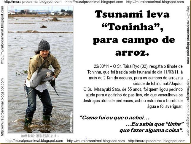toninha