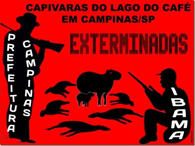 capivaras_exterminadas