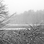 Farmington River Reservoir snowscape