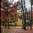 Park showcasing the stunning Fall colors