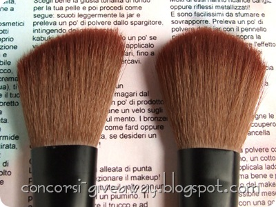 Giveaway-Minerale-Puro-make-up-Set-Pennelli-Particolare-1