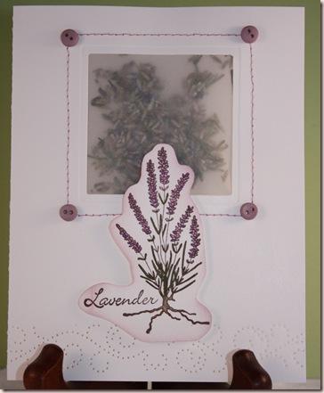 lav card