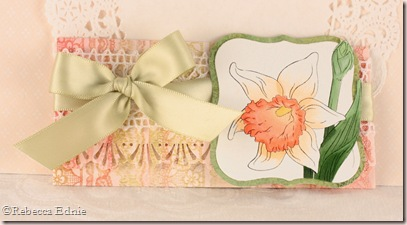 daffodil gift card holder