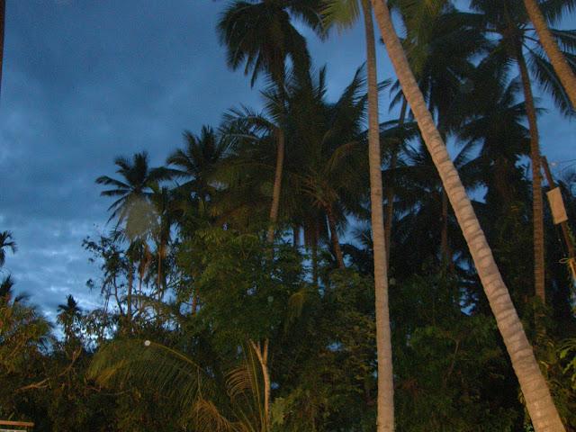 Laos by night