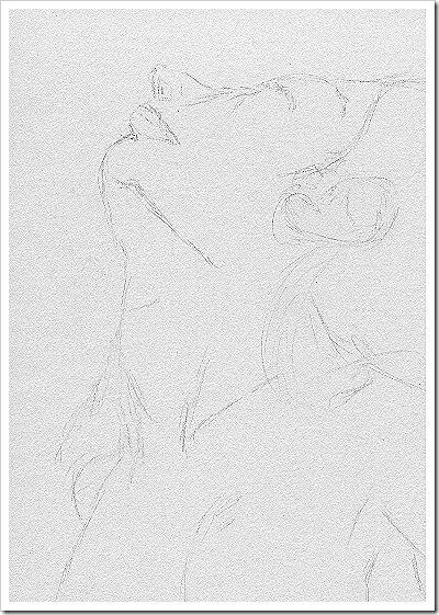 head drawing 1