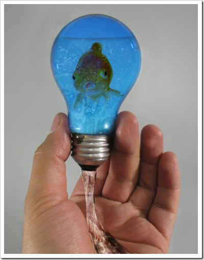 fish-in-a-lighbulb