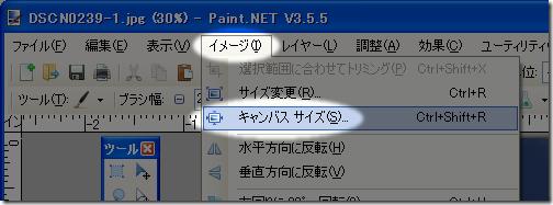 paintdotnet_dpi1