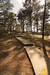 Camp John Hay's hilly pathways