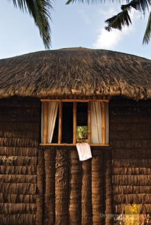 Coconut Casitas