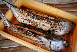 Grilled Tuna at Banol Beach, Coron