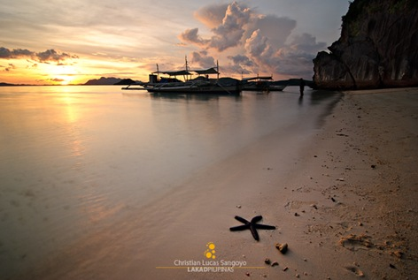 A Starfish During Sunset at Coron's Banol Beach