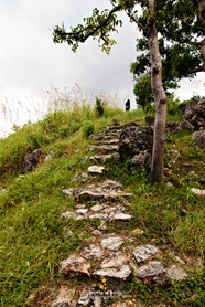 Up the Hill at Malcapuya Island