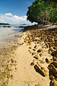 Rocky Shoreline at the Eastside of Banana Island
