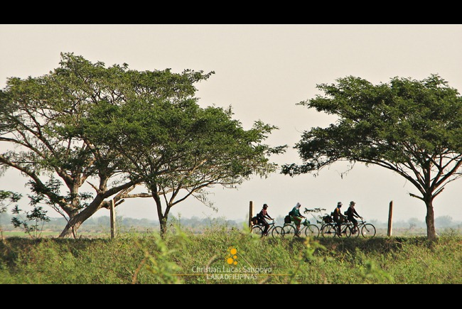Bikers Pedaling Along the Candaba Bird Sanctuary
