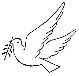 palomas paz (17)