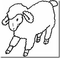 ovejas blogcolorear. com (6)