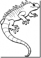 iguana blogcolorear (11)