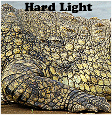Hard Light