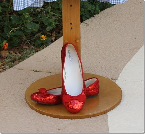 Dorothy Wizard of Oz 2010 033