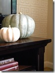 White and gray pumpkins