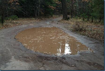 puddle01