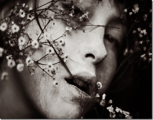 Soul_Spring_by_ElifKarakoc